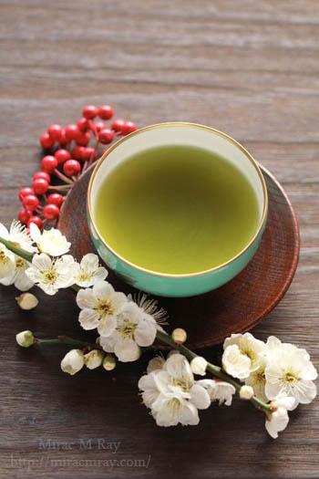 白梅と煎茶-1