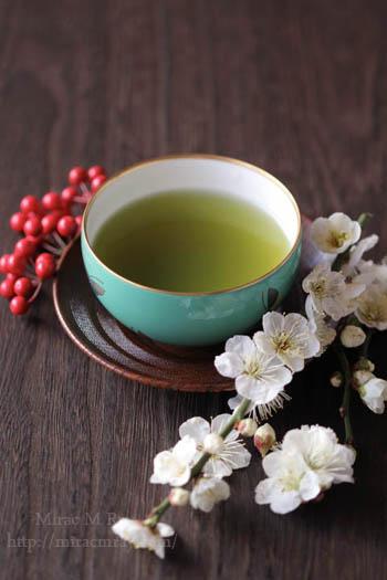 白梅と煎茶-3