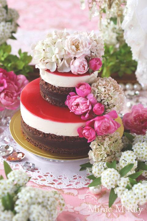 生チョコ×カスタードババロア×ラズベリーソースの2段ケーキ・アントルメ